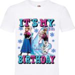 FROZEN It's My 6th BIRTHDAY 2